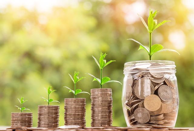 plans de pensions i plans d'estalvi